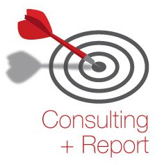 Consulting-Report